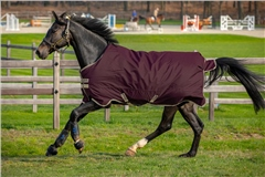 Weatherbeeta comfitec PP Channel Couette Combo Heavy Horse Stable Rug affaire *