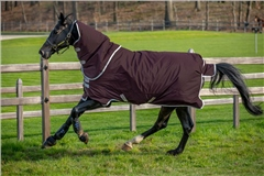 Horseware Amigo Hero Ripstop Plus Medium Turnout 200g