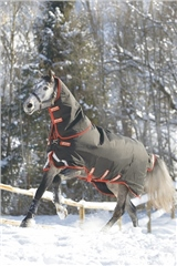 Horseware Rambo Supreme with Vari-Layer Heavy Turnout 450g