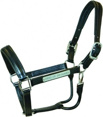 Walsh Dressage Leather Headcollar with Stainless Steel Fittings