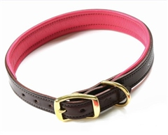 Walsh Signature Dog Collar