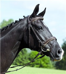 Kieffer Comfort IV Snaffle Bridle with Flash Noseband