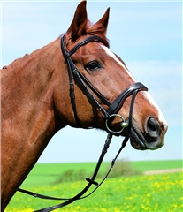 Kieffer Persues Snaffle Bridle with Crank Flash Noseband