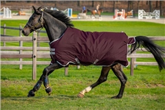 Horseware Amigo Hero Ripstop Turnout 50g
