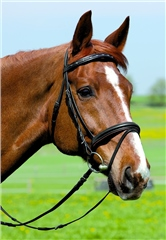 Kieffer Comfort I Snaffle Bridle with flash noseband and Chrome Browband