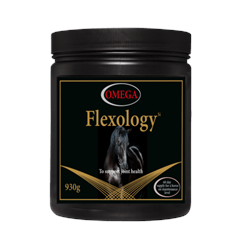 Omega Equine Flexology