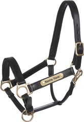 Old Mill Saddlery English Padded Leather Headcollar