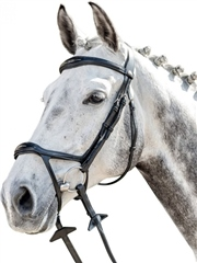 Prestige Italia E143 - Prestige Fancy Stitching Bridle with Drop Noseband