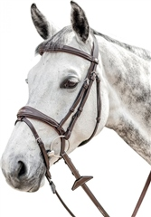 Prestige Italia E141 Prestige Fancy Stitching Bridle with English Noseband