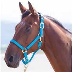 Shires Topaz Nylon Headcollar