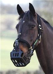 Shires Greenguard Headcollar