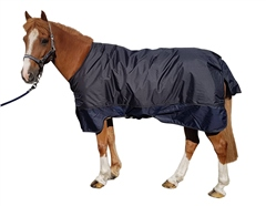 Unbranded Great Value Mediumweight Standard Neck Turnout Rug