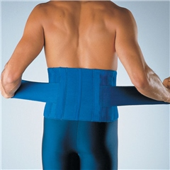 LP High Back Support