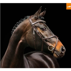 Schockemohle Rio Select Grackle Bridle