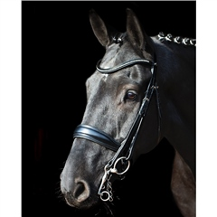 Schockemohle Milan Anatomical Double Bridle
