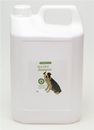 Companion Tea Tree Shampoo 250ml  - Click to view a larger image