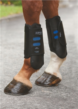 Dalmar Boots Dalmar Eventer Front Boots  - Click to view a larger image