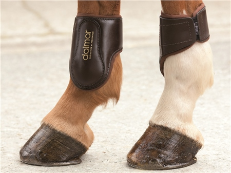 Dalmar Boots Dalmar Leather Traditional Style Back Fetlock Boots  - Click to view a larger image