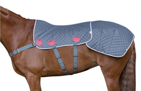 Equilibrium Magnetic Therapy Back and Quarters Pad  - Click to view a larger image