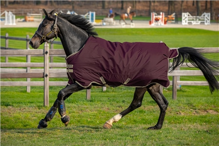 Horseware Amigo Hero Ripstop Turnout 100g  - Click to view a larger image