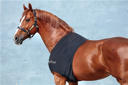 Horseware Rambo Slinky Shoulder  - Click to view a larger image