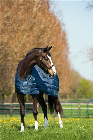Horseware Liner Lite 100g  - Click to view a larger image