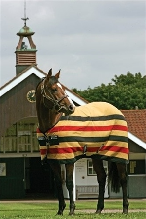 Horseware Rambo Deluxe Fleece Rug  - Click to view a larger image
