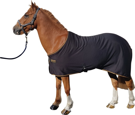 Horseware Prize Cooler  - Click to view a larger image