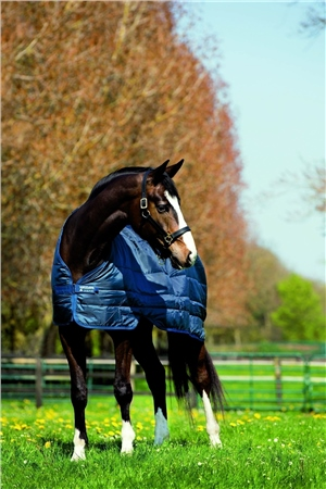 Horseware Liner Heavy 400g  - Click to view a larger image