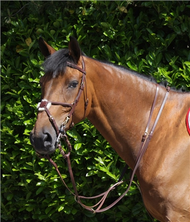 John Whitaker Running Martingale Brass  - Click to view a larger image