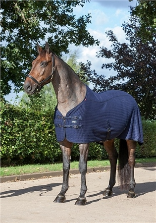 LeMieux Thermo-Cool Rug  - Click to view a larger image