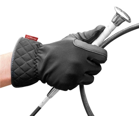 LeMieux Pro Touch Winter Riding Gloves  - Click to view a larger image