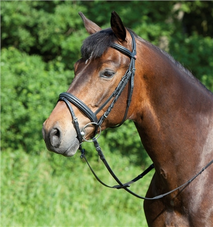 Kieffer Ergonomic Line Snaffle Bridle with Flash Noseband  - Click to view a larger image