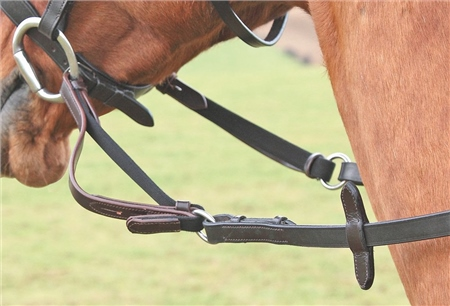Shires Flexi Rein  - Click to view a larger image
