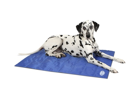 Scruffs Cooling Mat  - Click to view a larger image