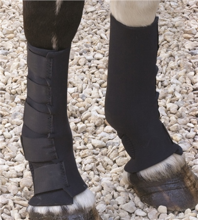 Shires Neoprene Mud Sock  - Click to view a larger image