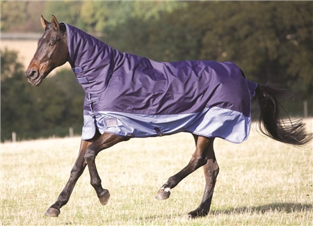 Shires Tempest 180 Combo Turnout Rug  - Click to view a larger image