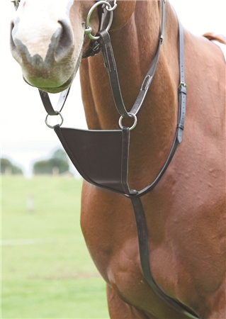 Shires Blenheim Leather Bib Martingale  - Click to view a larger image