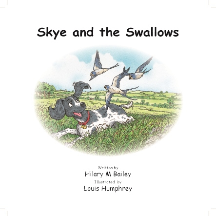 Unbranded Skye and the Shallows Children Book  - Click to view a larger image