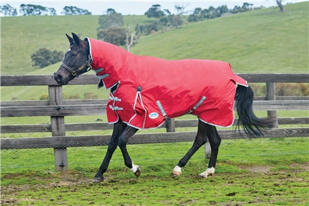Weatherbeeta ComFiTec Classic Combo Neck Turnout Lite  - Click to view a larger image