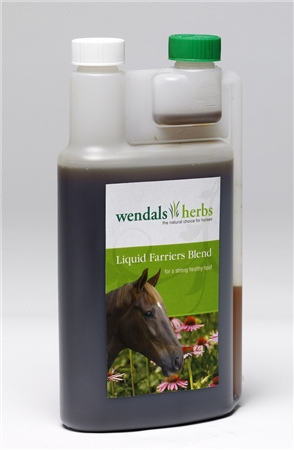 Wendals Herbs Devils Claw Liquid  - Click to view a larger image
